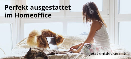 Work from Home bei MEDION