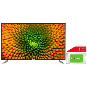 MEDION® LIFE® P15511 138,8 cm (55) Ultra HD TV + DVB-T 2 HD Modul (3 Monate freenet TV gratis) - ARTIKELSET