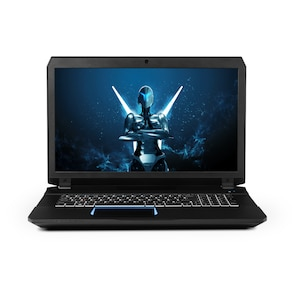 "MEDION® ERAZER® X7841 Intel Core™ i5-6300HQ, Windows 10 Home, 44 cm (17,3"") FHD Display, GTX 970M, 128GB SSD, 1 TB HDD, 8 GB RAM, Gaming Notebook (B-Ware)"
