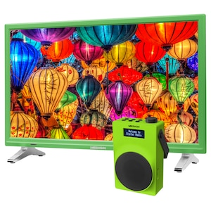 MEDION® LIFE® P12501 TV, 54,6 cm (21,5) LED-Backlight, HD Triple Tuner, integrierter DVD-Player, CI+, inkl. DAB+ Radio E66880