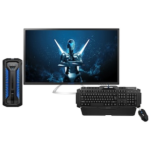 MEDION® ERAZER® X67069, Intel® Core™ i7-8700, Windows 10 Home, GTX 1060, 256 GB SSD, High-End Gaming PC inkl. 80cm (31,5'') Monitor X58222, Tastatur X81025 & Maus X81044