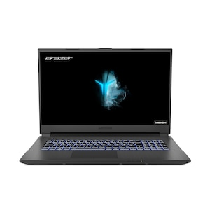 MEDION® ERAZER® Defender E10, Intel® Core™ i7-10750H, Windows 10 Home, 43,9 cm (17,3) FHD Display, GTX 1650 Ti, 512 GB SSD, 1 TB HDD, 16 GB RAM, Gaming Notebook