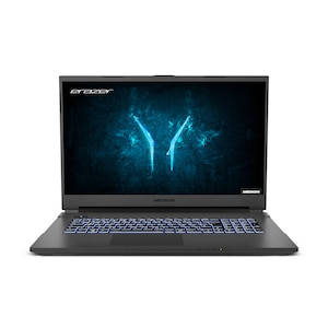 MEDION® ERAZER® Defender P10, Intel® Core™ i7-10750H, Windows 10 Home, 43,9 cm (17,3) FHD Display, RTX 2060, 512 GB SSD, 1 TB HDD, 16 GB RAM, Core Gaming Notebook