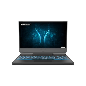 MEDION® ERAZER® Deputy P10, Intel® Core™ i7-10750H, Windows 10 Home, 39,6 cm (15,6'') FHD Display, GTX 1660 Ti, 512 GB SSD, 1 TB HDD, 16 GB RAM, Core Gaming Notebook